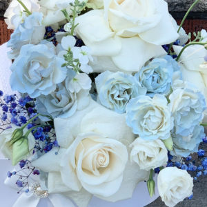 Baby Carriage Blooms4